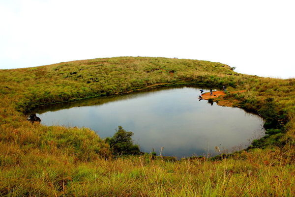800px-heart_shaped_pond_wayanad