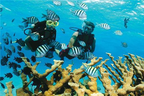 scuba diving in port blair